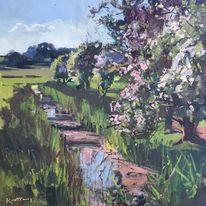 Hawthorn blossom, Harry's field