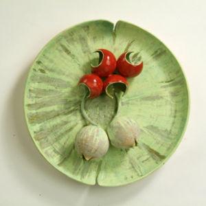 Euphorbia seed