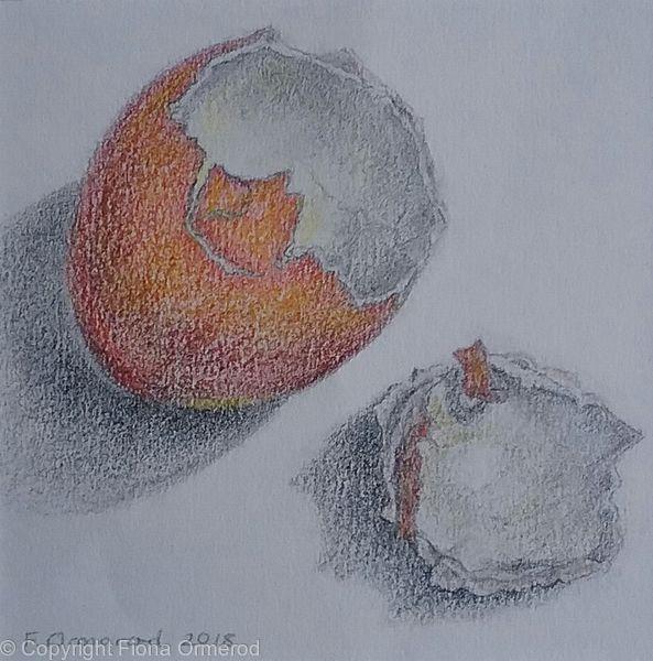 Remains of a Large Free-Range Egg