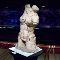 Scarred Venus