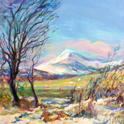 Winter Sun, Ben Ledi