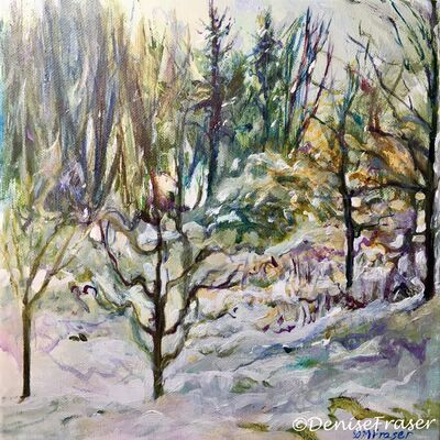 New trees in the snow