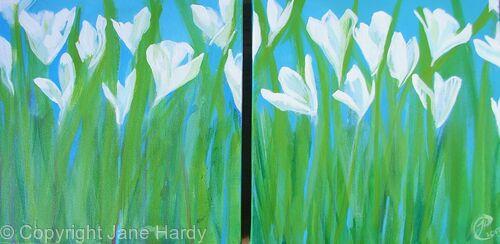 Snow-White buds