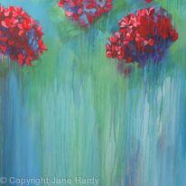 Hydrangea Blush