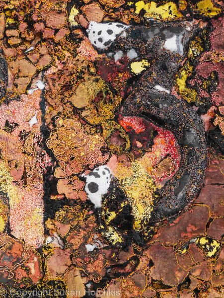 detail of Spill