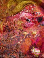 Rust-rose detail