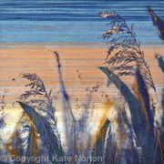 Evening Reeds