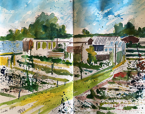 Allotment sketch Day 260 NFS