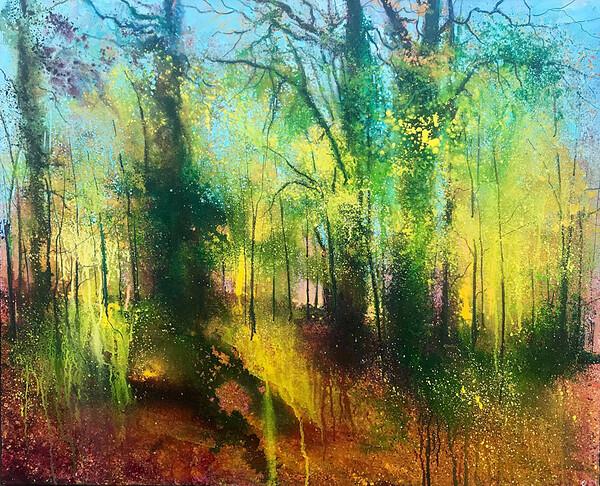 Whitley Autumn Colour..