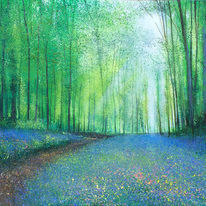 Path through Dollys Wood SOLD