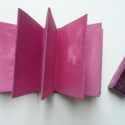 Small sturdy concertina book with wrap closure