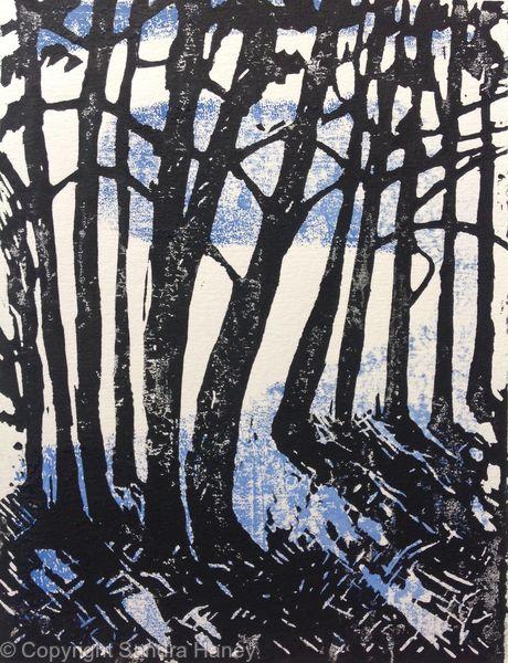 Bluebell Wood 9/10