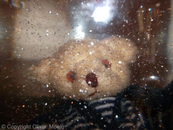 Confiture de ptit ourson perdu
