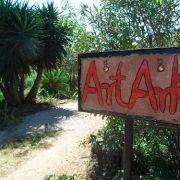 Art Ark