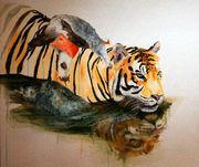 Ina Hsu Schwimmende Tiger