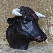 Jackiie Summerfield Bull
