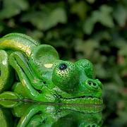 clay chameleon