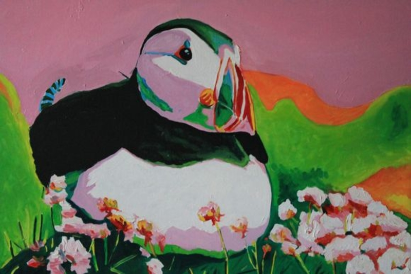 Puffin in the Pink