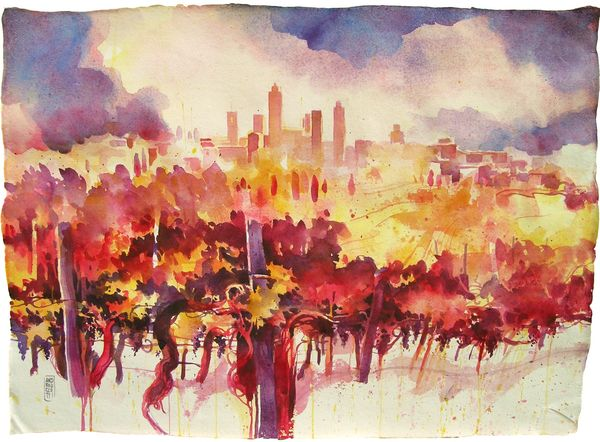 Vineyards in San Gimignano