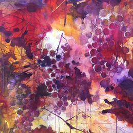 Uva (Grapes)