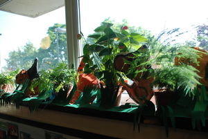 Rain Forest display at Drayton Park Primary