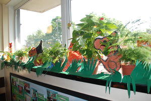 rain forest display at Drayton park Primary school