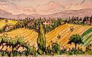 hills-of-umbria