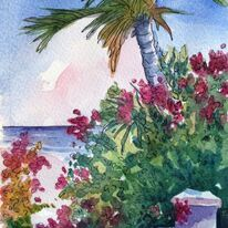 Cayman Bougainvillea and a sea view
