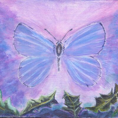 Holly Blue   by Debbie Perry