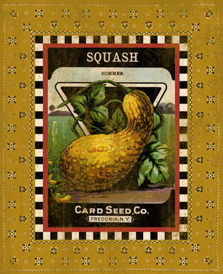 Summer Squash Seed Pack