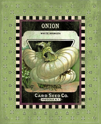 Onion Seed Pack
