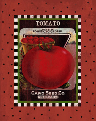 Tomato Seed Pack