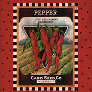 Pepper Seed Pack