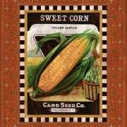 Sweet Corn Seed Pack