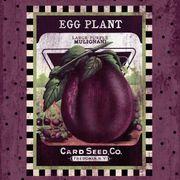 Eggplant Seed Pack