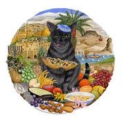 Israeli cat