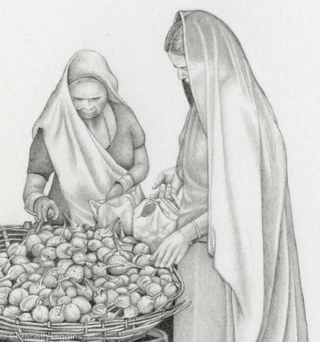 Aubergines in Mumbai