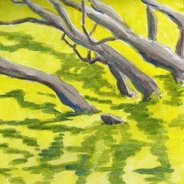 M. Richard's trees 17.VIII.09