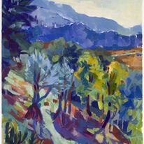 Morning Hillside, Olives and Acacia