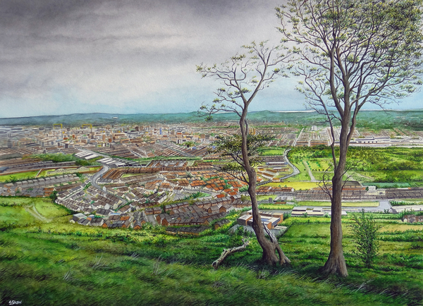 Belfast from The Hatchet Field