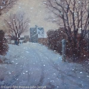 Snowstorm, Peter's Green