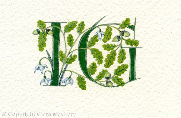 Two letters in dark green with oak branches, acorns and snowdropts
