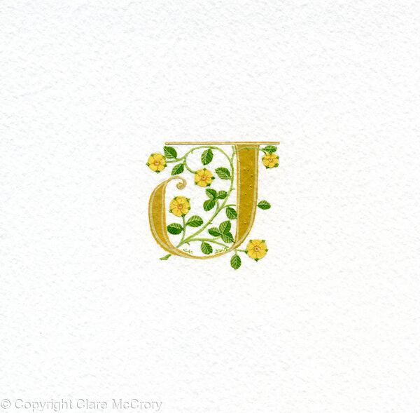 Initial letter J with yellow heraldic roses on watercolour paper