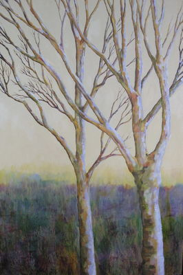 Birch Trees at the Edge of the Moor