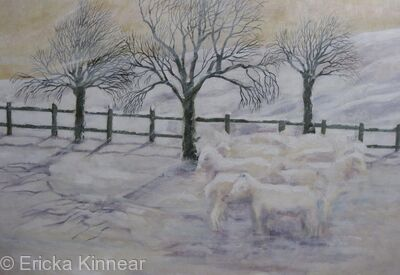 Sheep in Snow (2)