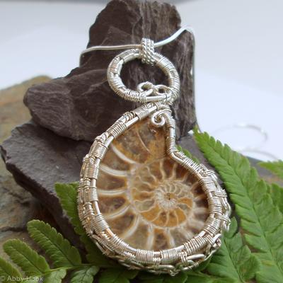 Ammonite Spirals
