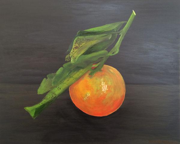 Nadorcott Mandarin