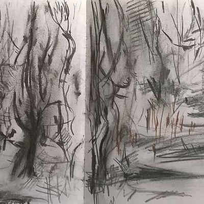 January 2017 - trees