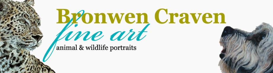 Bronwen Craven - Fine Art