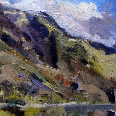 Buttermere Study 1